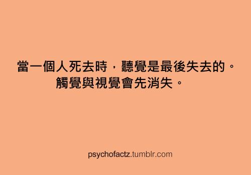 tumblr_mpwraoe58Y1rnn6wqo1_500